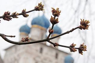 Прогноз погоды: в Гидрометцентре удивили неожиданным прогнозом на апрель