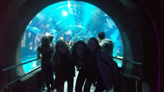 AquaRio com as bogueiras Denise e Ana - Todas as dicas para visitar o maior aquário da América do Sul