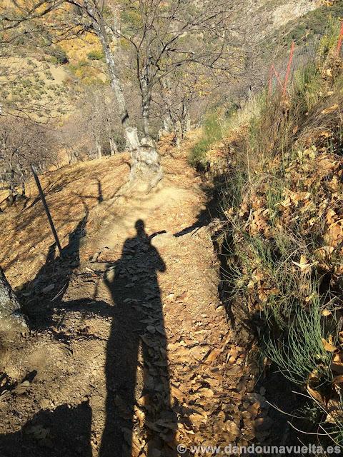 Sendero en la ruta de senderismo de los castaños Parauta