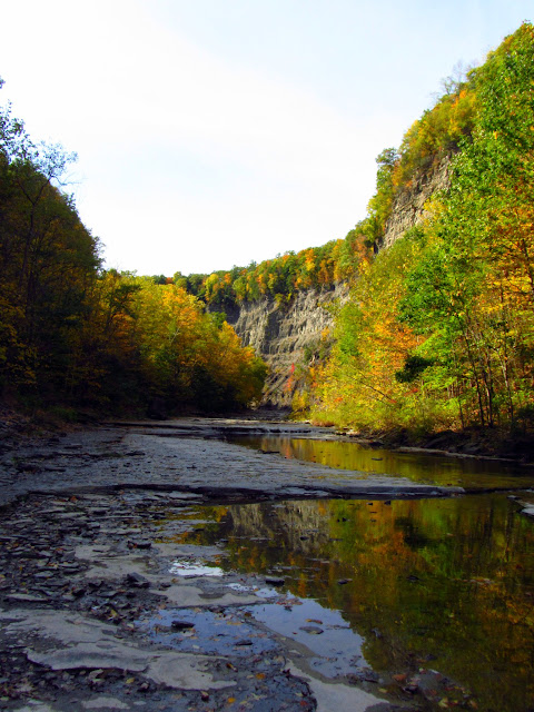 Fall colors along the Taughannock Creek in New York