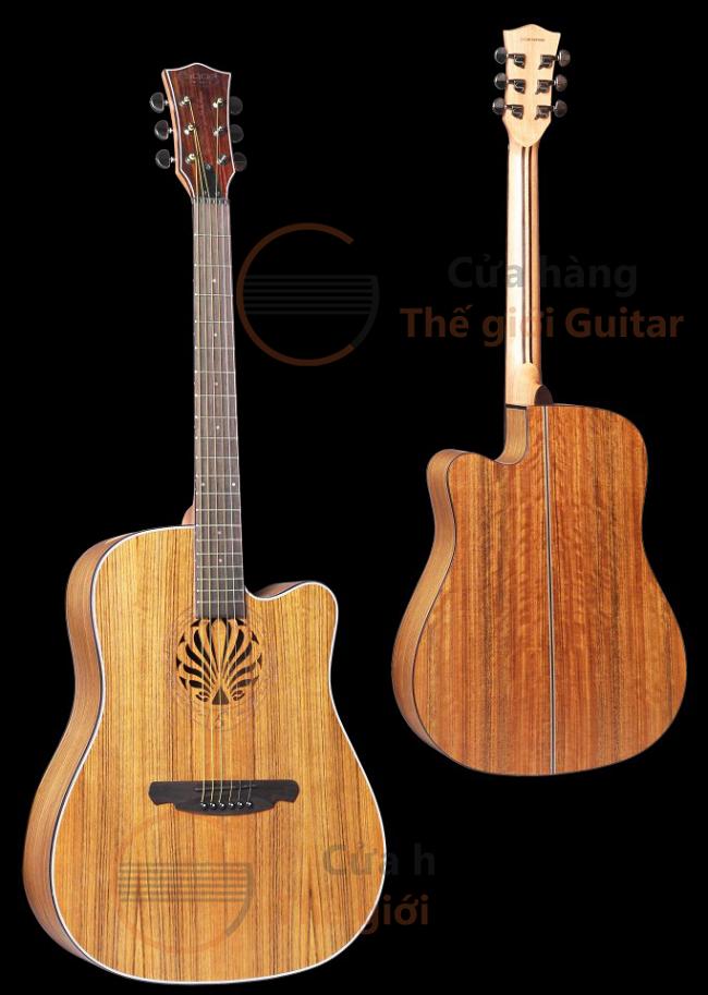 Đàn Guitar SQN