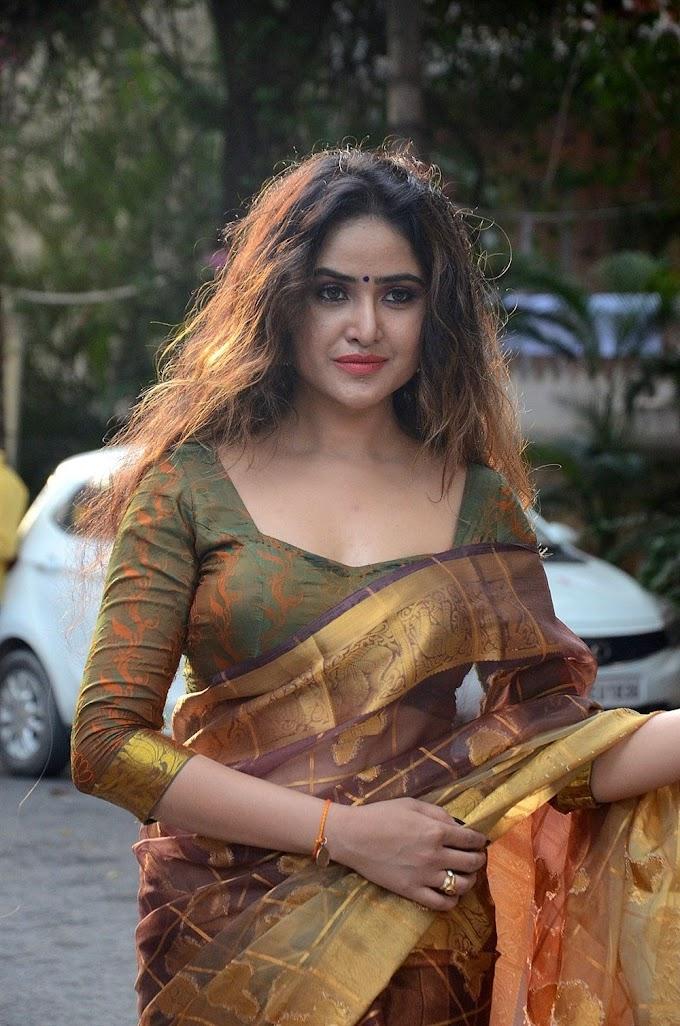 Actress Sony Charishta Hot In Saree