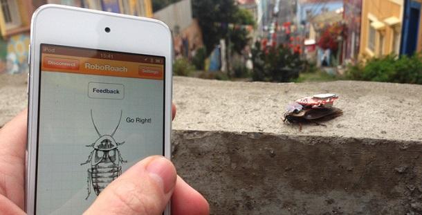 Baratas vivas podem ser controladas por smartphone