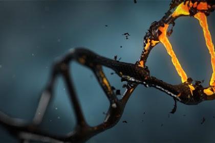 Pengertian Biologi Molekuler dan Teknik Biologi Molekuler