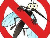 Ayo, Basmi Nyamuk dengan Ultrasonik! Menurut Prof. Singgih H. Sigit dan Dr. drh. Upik Kesumawati Hadi, MS
