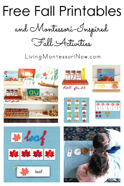Montessori-Inspired Fall Activities Using Free Printables