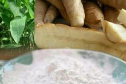 20 Benefits of Arrowroot Flour for health