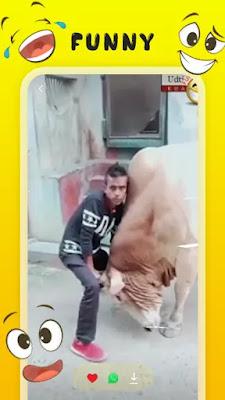 VidFun - Funny Video