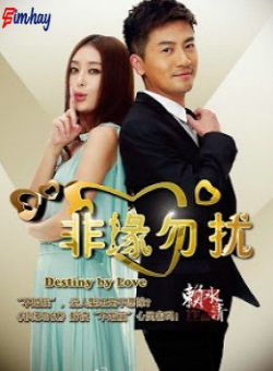 Không Yêu Xin Đừng Làm Phiền - Destiny By Love (2013)
