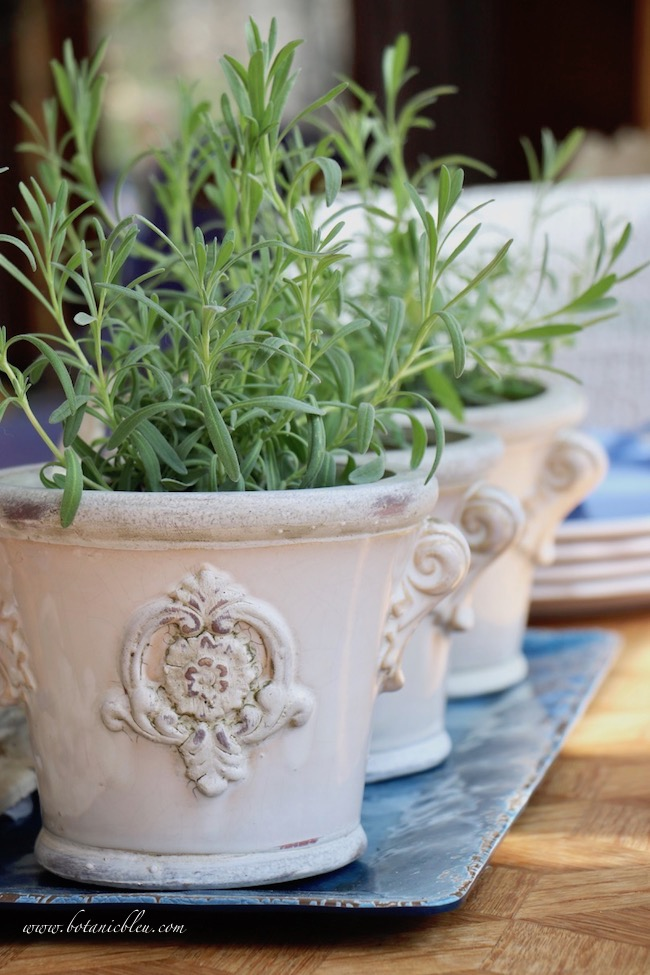French gardener gift guide includes French style flower pots