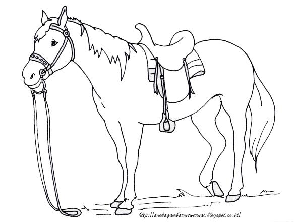 Gambar Mewarnai Kuda Untuk Anak PAUD dan TK 1