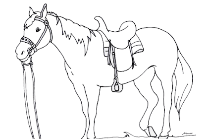 Gambar Kuda Untuk Mewarnai