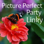 Picture Perfect Linky Party