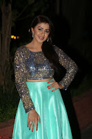 Nikki Galrani in Green Skirt  Top at Marakathamani music launch ~  Exclusive (10).JPG