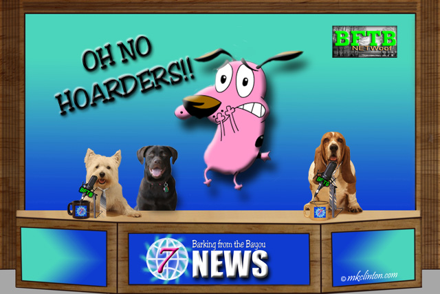 BFTB NETWoof News set with cartoon pink dog on back screen