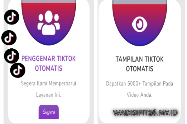 Allsmo Com Tools Tiktok Website Auto Follower Likes And Views Terbaru 2020