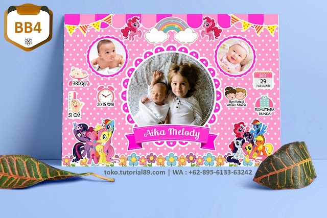 Biodata Bayi Costume Baby Girl Kode BB4