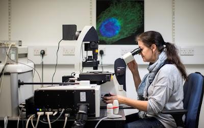 Вчені з'ясували, як зменшити ризик розвитку раку