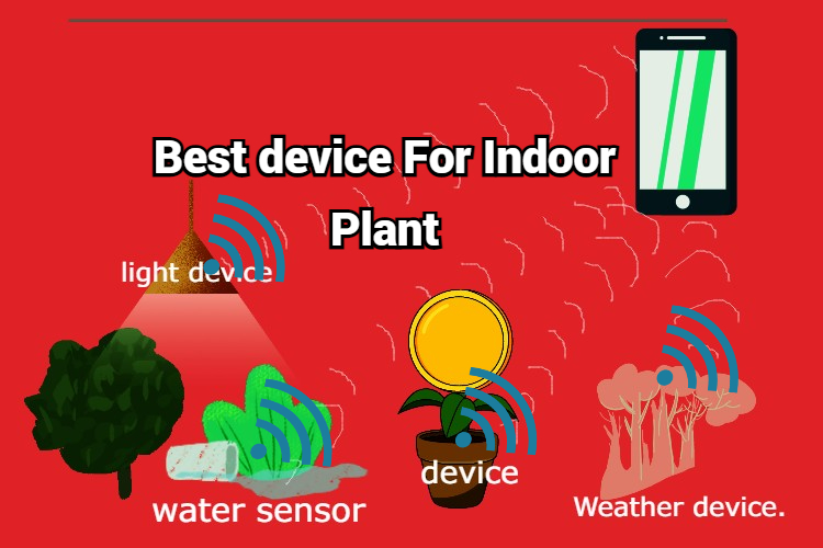 If you are fond of indoor plants then this device is for you. best device for plants