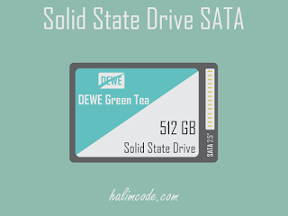 Solid State Drive SATA