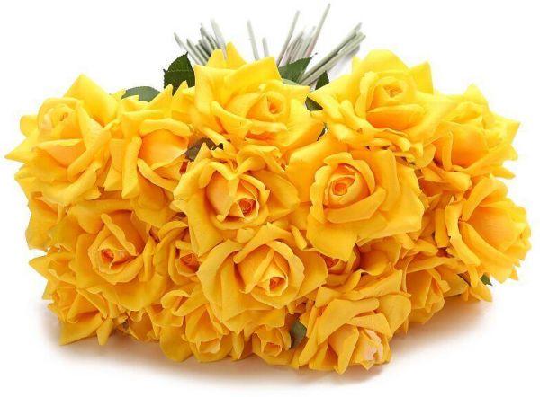 الورد الأصفر للغيرة