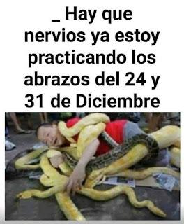 Chico práctica abrazos para Navidad con serpientes