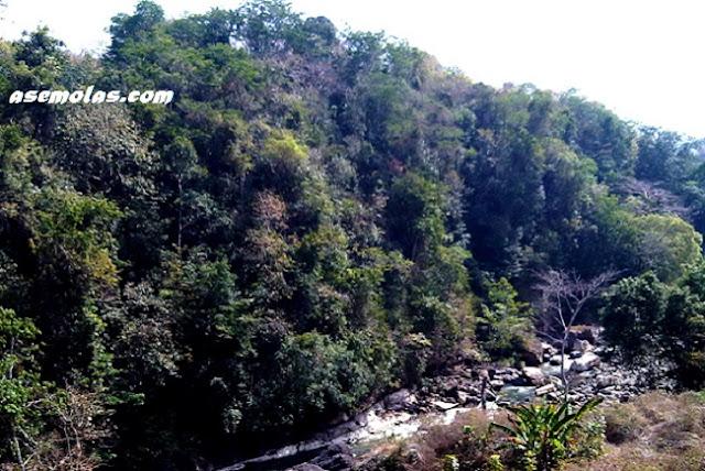 Wisata Istana Ular - Akses Jalan Menuju Istana Ular Lembor, Flores