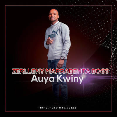 Zerlleny - Auya Kwiny (2020) | Download Mp3