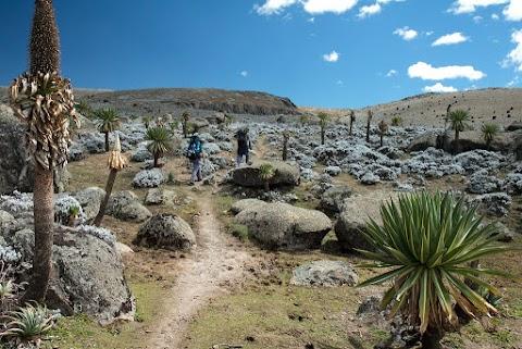 """A világ legkorábbi magashegyi """"településének"""" maradványait tárták fel Etiópiában"""