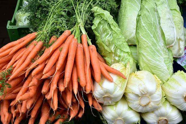 peluang usaha jualan sayuran