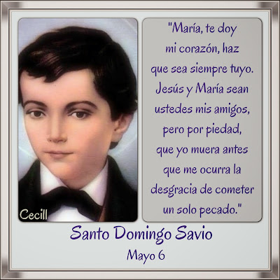 Resultado de imagen para Santo Domingo Savio