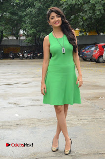 Actress Poonam Kaur Pictures in Green Short Dress at Prayanam Movie Opening  0079.JPG