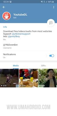 Bot Telegram Video Downloader