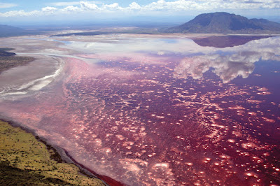 Natron Lake, Blood Red Lake,