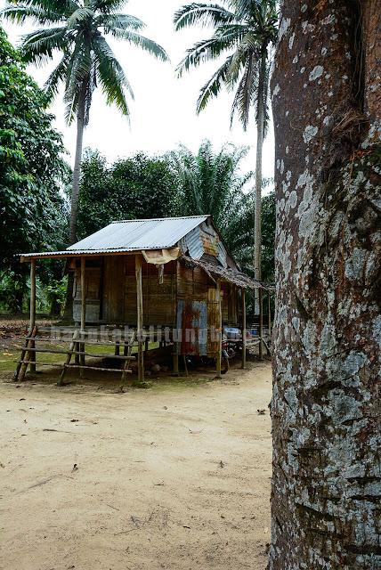 rumah-khas-adat-bangka-belitung