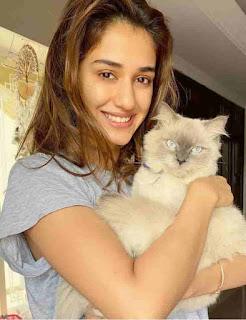 Disha Patani With Cat
