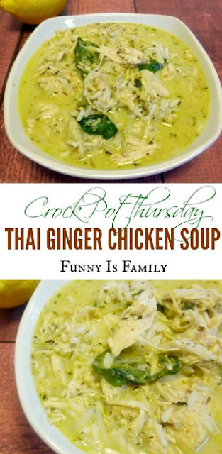 Crock Pot Thai Ginger Chicken Soup