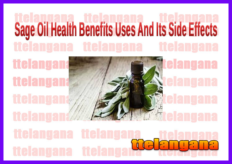 Sage Oil Health Benefits Uses And Its Side Effects