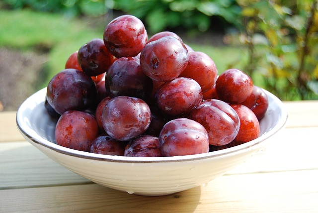https://www.darshanfitness.com/2019/07/health-benefits-of-plums.html?m=1