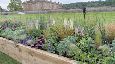 15 Borduras de herbáceas en Chatsworth Flower Show