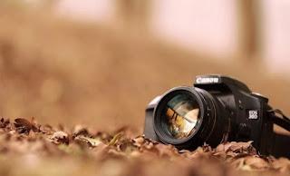 Teknik Focus serta Recompose Pada Sebuah Kamera DSLR