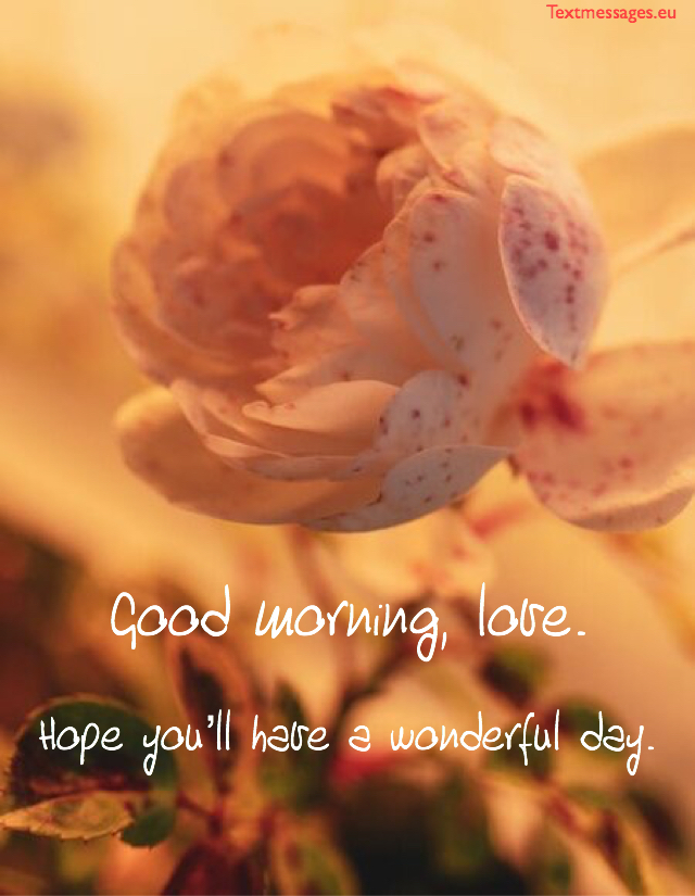 500+ Good Morning Messages For Her to Brighten Her Day