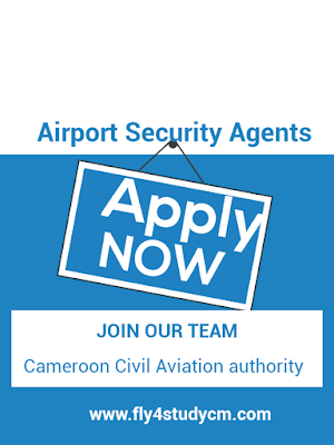 Cameroon civil Aviation jobs
