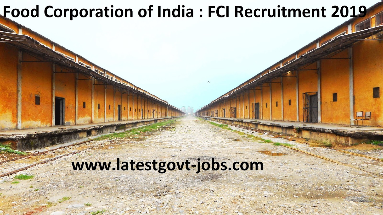 FCI Recruitment 2019 - Graduation, Engineering, Diploma Pass - 4103 Govt jobs - Apply Online