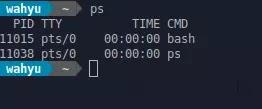 output layar ps