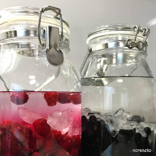 梅酒や果実酒作りに梅酒や果実酒作りにセラーメイトの瓶をおすすめする理由果実酒