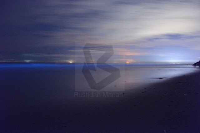 Fenomena Air Mata Biru di Pantai Tusan