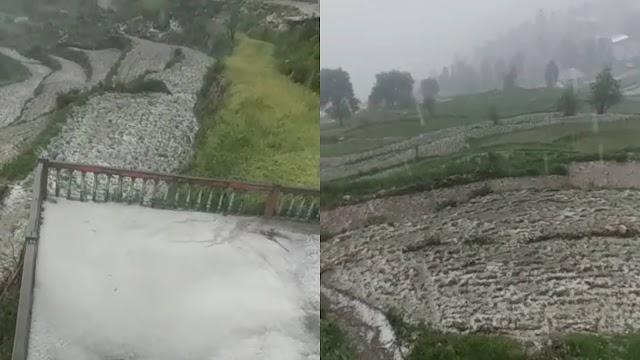 किसानों-बागवानों पर कोरोना के बाद बरपा ओलावृष्टि का कहर, फसलों को भारी नुकसान