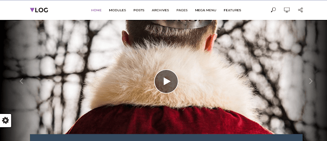 Professional WordPress Themes For Blogging and Vlogging 3