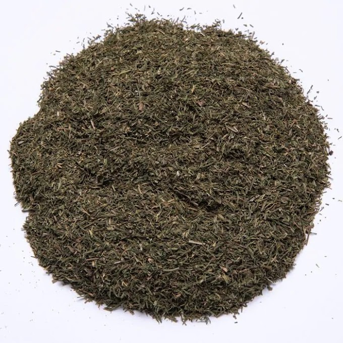 Άνηθος – Anethum 50γρ.